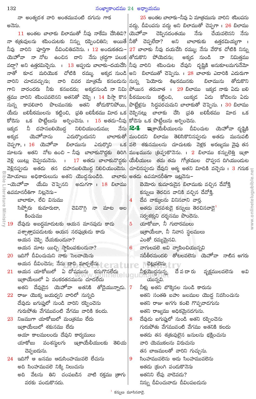 Bible Literature Ministry - Telugu Bible - Numbers - Chapter 24
